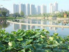 开元河 景观介绍